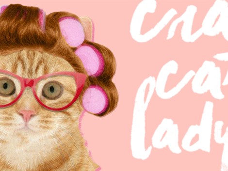crazy cat lady-banner a